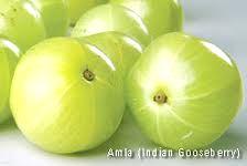Amalaki (Indian gooseberry)