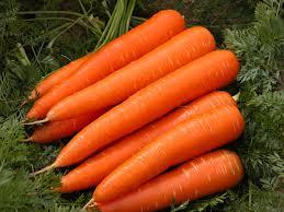 Carrots – The Winter Fruit cum Veggie